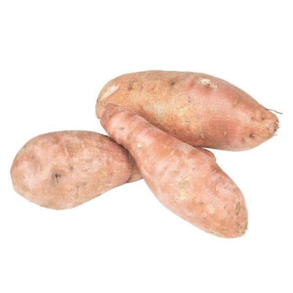 patates douces patate douce Passion Saisons légumes saison
